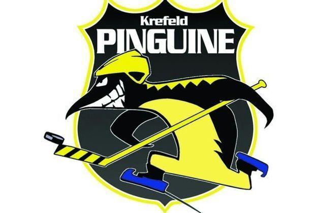Pinguine lösen Vertrag mit Klubertanz auf