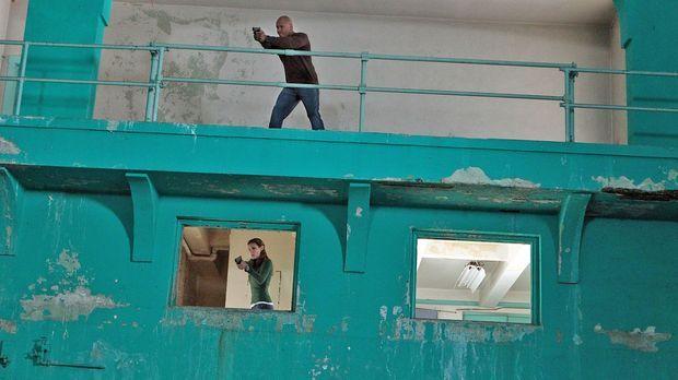 Die nationale Sicherheit ist bedroht: Sam (LL Cool J, oben) und Kensi (Daniel...