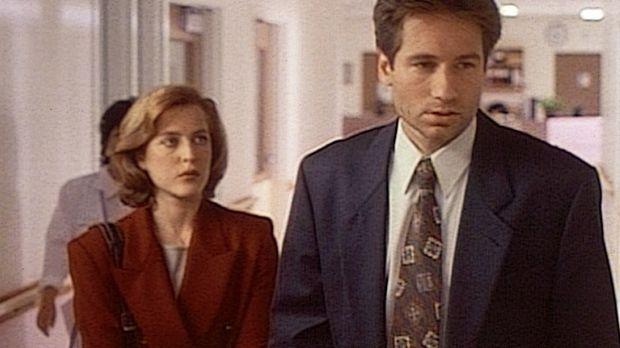 Akte X - Die unheimlichen Fälle des FBI - Die FBI-Agenten Scully (Gillian And...