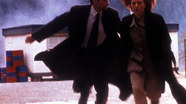 Mulder (David Duchovny, l.) und Scully (Gillian Anderson, r.) flüchten, als d...