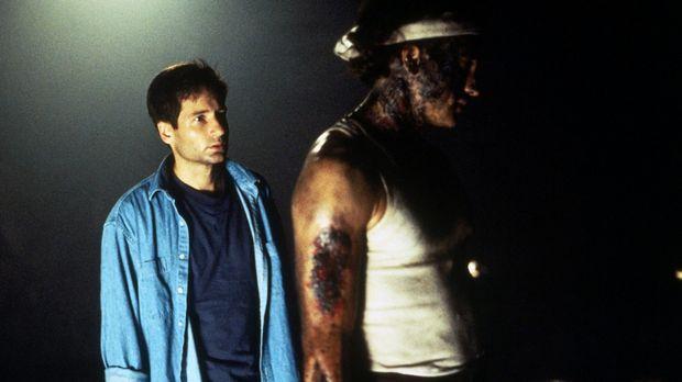 Tief im Inneren des Mount Avalon trifft Mulder (David Duchovny, l.) auf den V...