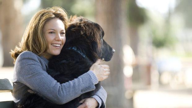 Sarah Nolan (Diane Lane) ist frisch geschieden und soll wieder an den Mann ge...