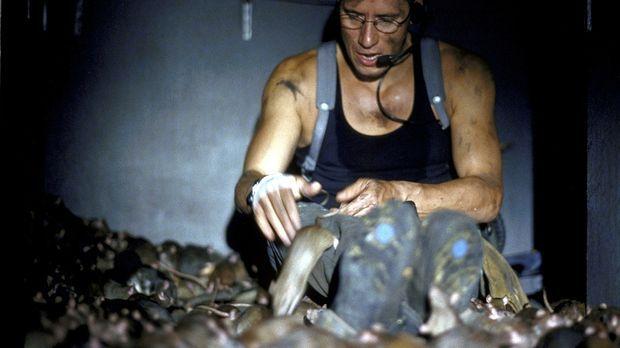 Inmitten von Millionen von Ratten soll Frank (Ralph Herforth) einen Sprengsat...