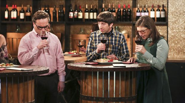 the big bang theory staffel 3 folge 22
