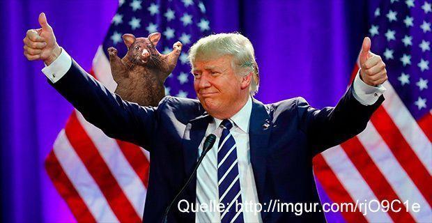 possum_trump