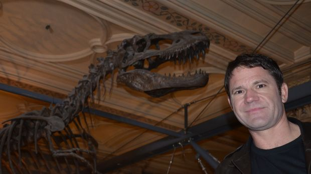 Beeindruckt von dem Skelett eines Allosaurus: Steve Backshall ... © Scott Ale...