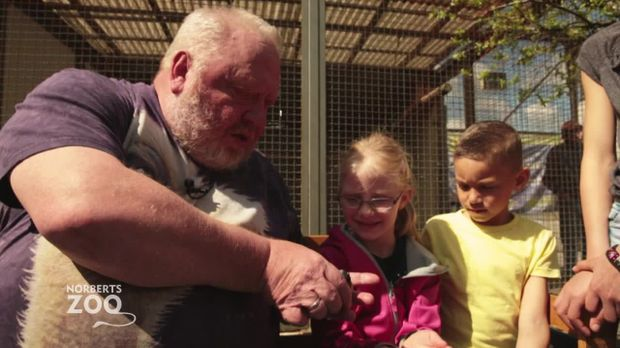 Norberts Zoo - Der Größte Tierladen Der Welt - Norberts Zoo - Der Größte Tierladen Der Welt - Norberts Zoo - Folge 1