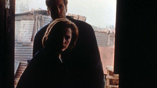 Scully (Gillian Anderson, vorne) und Mulder (David Duchovny, hinten) entdecke...