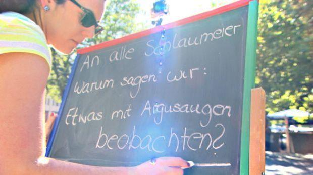 Schlaumeier - Argusauge
