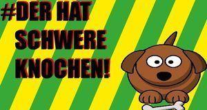 FetterHundFacebook_SchwereKnochen