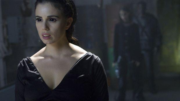 Ein Jahr nach der Ermordung ihres Mannes durch die untote Vampirkönigin Lilit...