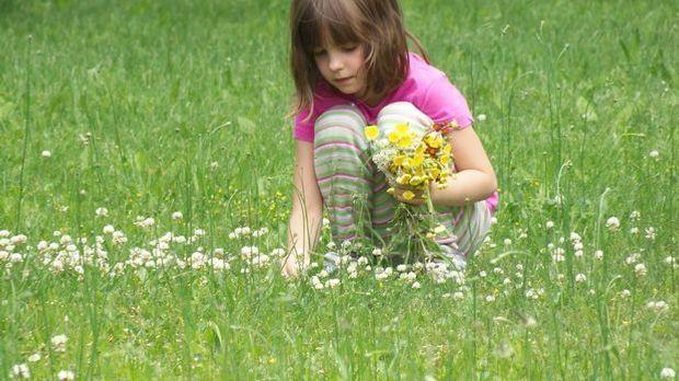 Mädchen-Blumen-pflücken-pixabay