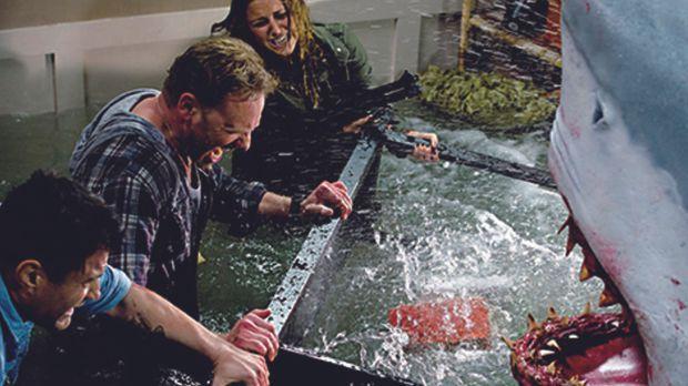 Nehmen den Kampf gegen die Haie auf: Fin (Ian Ziering, M.), George (John Hear...