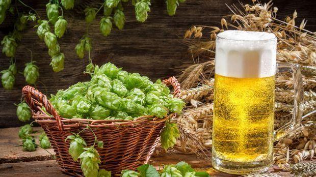 Ein Korb voller Hopfen neben einem Glas Bier
