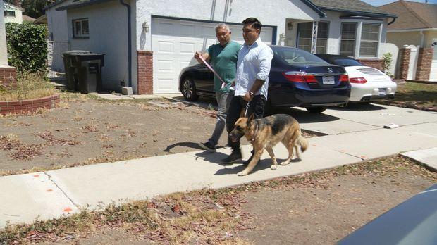 Ron (r.) braucht dringend Cesars (l.) Hilfe, denn dank seines Hundes Savannah...