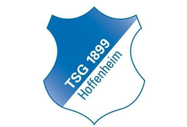 U19-Trainer Domenico Tedesco verlässt 1899 Hoffenheim