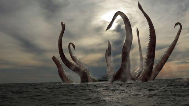 Das Forscherteam begibt sich auf die Suche nach einem gigantischen Riesenkrak...