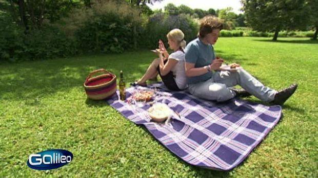 perfektes picknick food. Black Bedroom Furniture Sets. Home Design Ideas