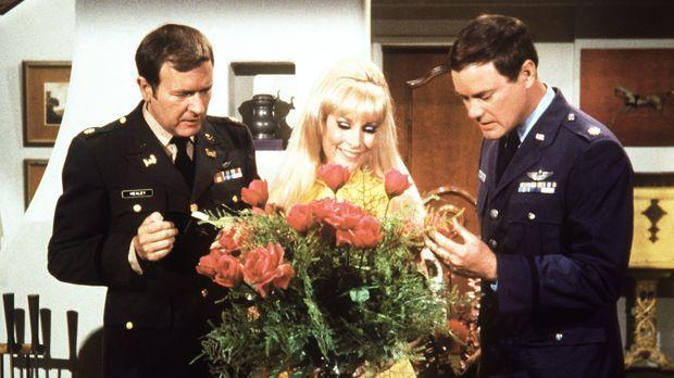 Jeannie (Barbara Eden, M.) freut sich über den Blumenstrauß, doch Roger (Bill...