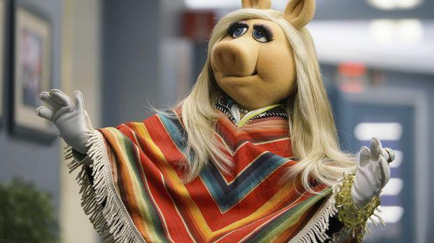 Hat neue Erkenntnisse im Urlaub getroffen: Miss Piggy ... © Andrea McCallin A...