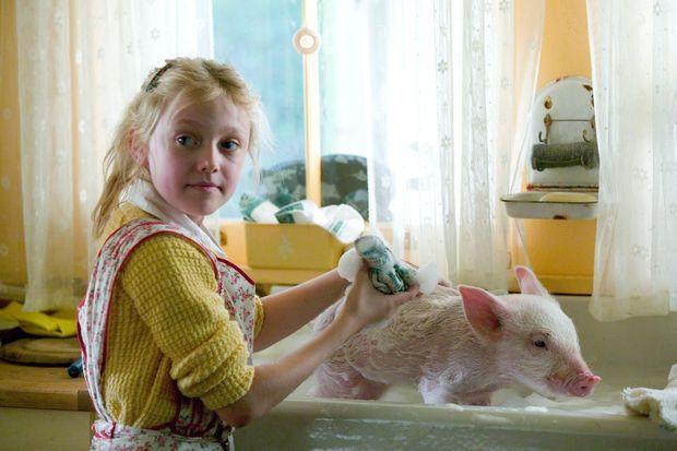 film so ein kleines schwein kann nat rlich nicht wissen wie man sich nach dem toben im. Black Bedroom Furniture Sets. Home Design Ideas