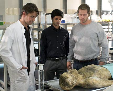 Der letzte Bulle - Dank der DNA-Untersuchungen des Pathologen Roland Meisner...