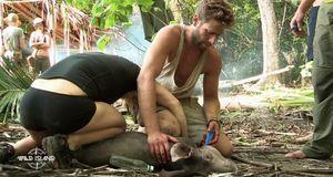 Wild Island - Folge 4: Mensch Gegen Tier